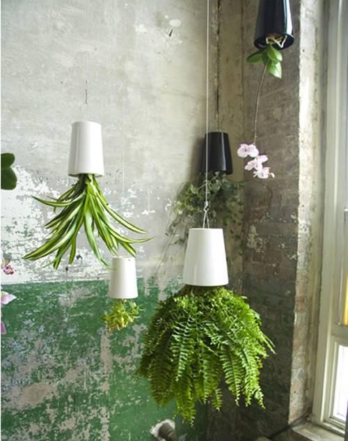 Ondersteboven planten