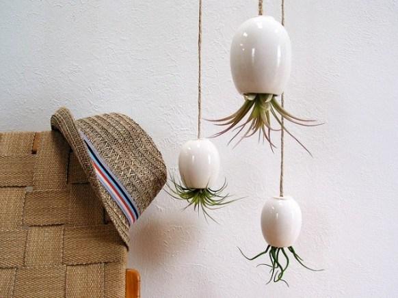 Planten ondersteboven hangen